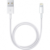 Apple Lightning To Usb (0.5m)
