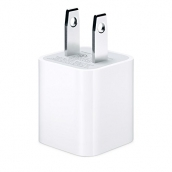 Apple Oem Home Charger Head